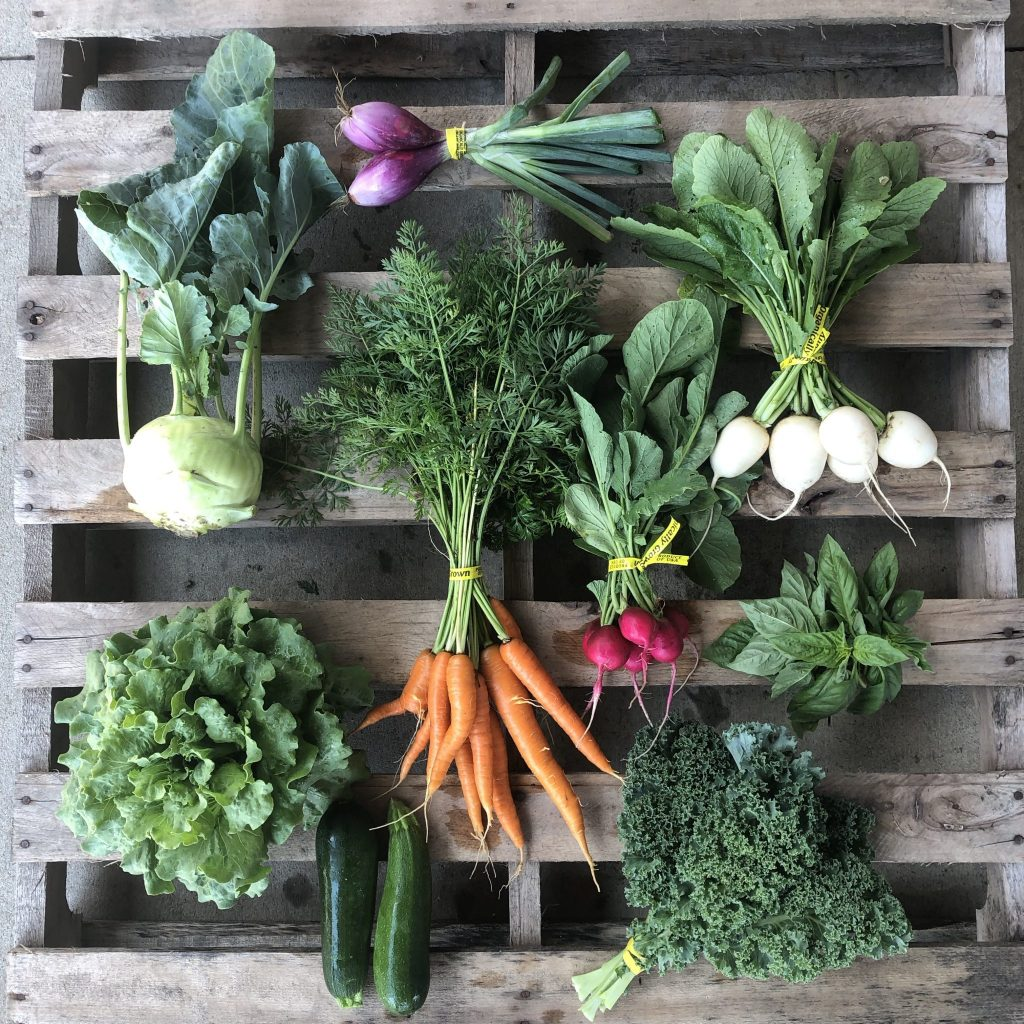 Week 5 Csa Newsletter 2019 Shared Legacy Farms